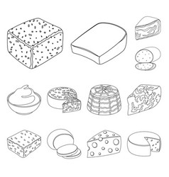 Different kind of cheese outline icons in set vector