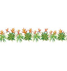 succulent cactus ribbon tropical plants flowers vector image