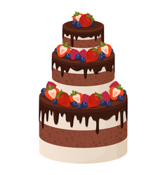 three-tier cake with chocolate and cream layers vector image