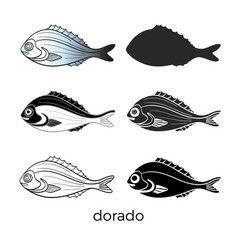 dorado set vector image
