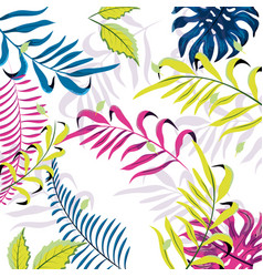beauty plant branches with exotic leaves vector image