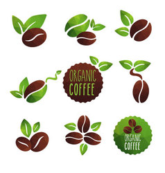 Coffee organic vector