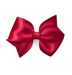 Isolated red photorealistic silk bow for your vector