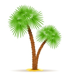 palm tree 05 vector image