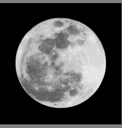 realistic gray full moon vector image
