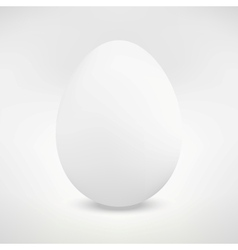 Realistic Isolated Egg vector image
