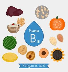 Vitamin b15 or pangamic acid infographic vitamin vector