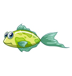 A small green fish vector image