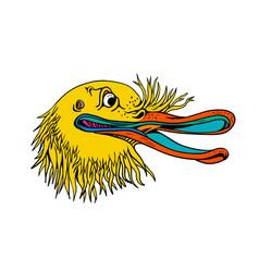 aggressive kiwi bird graffiti color vector image