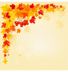 Autumn background with colorful leaves back vector