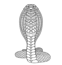 Clean lines doodle design of Cobra snake for adult vector