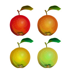collection of apples vector image