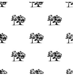 Forest fire icon in black style for web vector