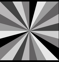 gray sunburst background pattern of swirled vector image