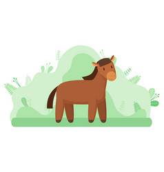 Horse or livestock animal farming and agriculture vector
