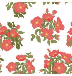 imprints blooming wild rose seamless vector image