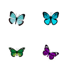 Realistic lexias birdwing butterfly and other vector