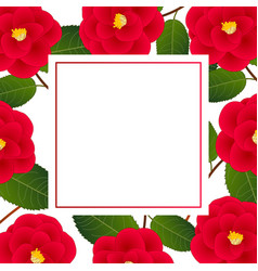 red camellia flower on white banner card vector image