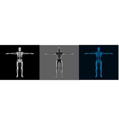 X-ray human body set vector