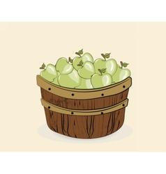 Green apples in a wooden basket vector image