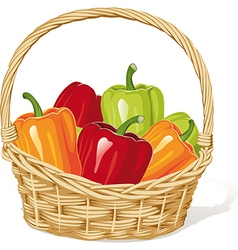 Basket with peppers vector