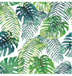 Fern monstera seamless leaves white background vector