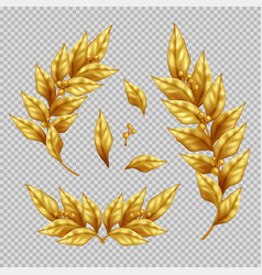 golden laurel branches and leaves vector image