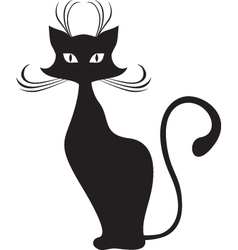 graceful cat vector image vector image
