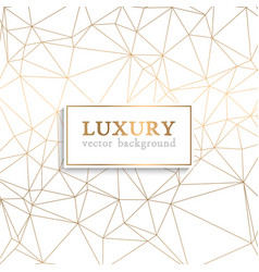luxury pattern vector image