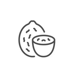 nutmeg line icon vector image