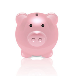 realistic 3d pink retro piggy bank closeup vector image