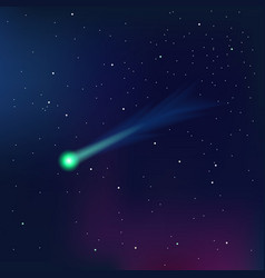 Comet on a starry sky vector image