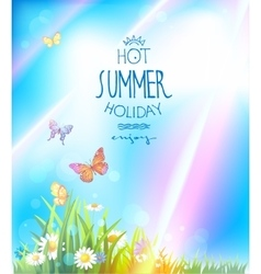 Beautiful summer with sunlight vector image
