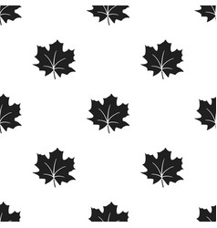 Maple leaf icon in black style for web vector