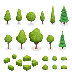 Park plants isometric set vector