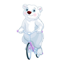 polar bear riding a bicycle vector image
