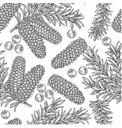 seamless pattern with hand drawn fir cones vector image