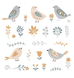 set graphic floral elements and birds vector image