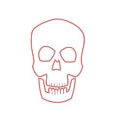 Skull human head bone medicine concept vector