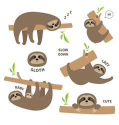 Sloth set mother with baby Cute lazy cartoon vector image vector image