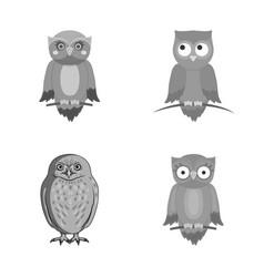 Animal and tattoo symbol vector