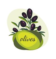 Black olive branches banner design for olive oil vector