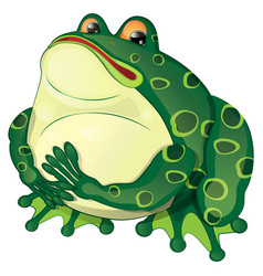 Cartoon fat frog sits and looks vector