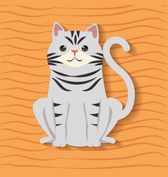 Cute cat pet friendly vector