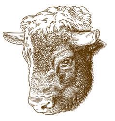 Etching of bison head vector