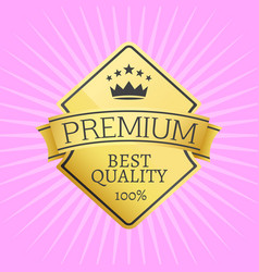 gold emblem topped by crown premium quality icon vector image