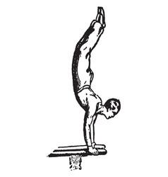 Gymnastics vintage vector