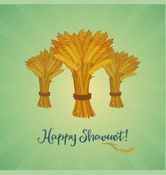 Happy shavuot jewish holiday greeting card vector
