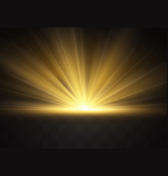 light highlight yellow vector image
