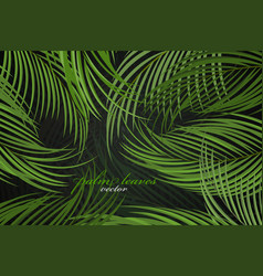 Palm leaves scene vector